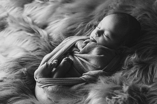 Photographe - Clin d'½il Photographie - Charleyne Derom  - photo 26