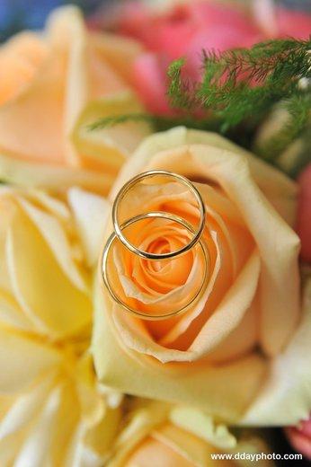 Photographe mariage - Patrik Hussenet Photographe - photo 21