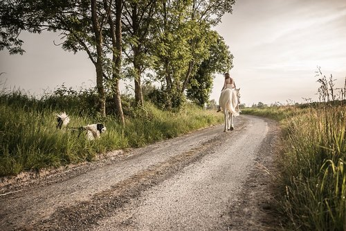 Photographe mariage - Julien Herry Photographe - photo 26