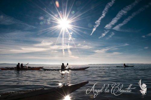 Photographe - Angel la Chouette Photographe - photo 17