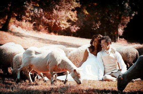 Photographe mariage - Studio CLIN D'OEIL - photo 3