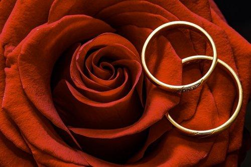 Photographe mariage - alexandre flury - photo 3