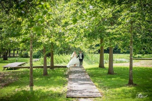 Photographe mariage - PASCAL PIERRE - PHOTOGRAPHE - photo 12