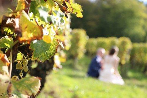 Photographe mariage - Le Gout de la Mangue - photo 25