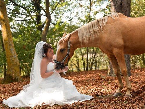 Photographe mariage - Studio Image - photo 12