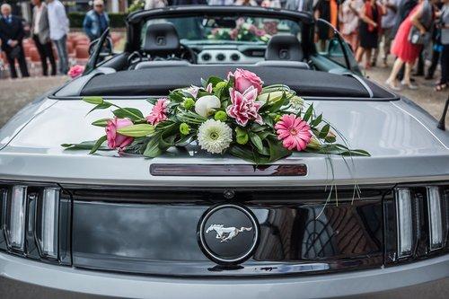 Photographe mariage - David Mignot Photos - photo 28