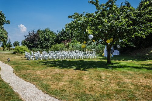Photographe mariage - David Mignot Photos - photo 33