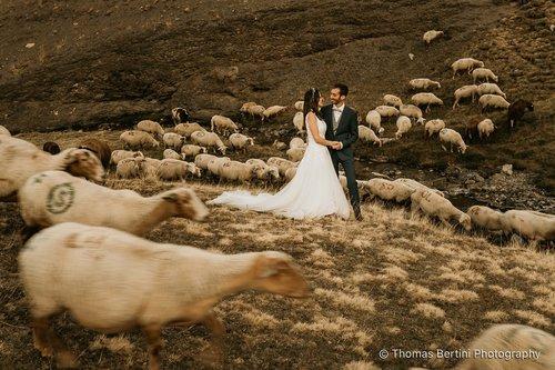 Photographe mariage - Thomas Bertini Photography - photo 22