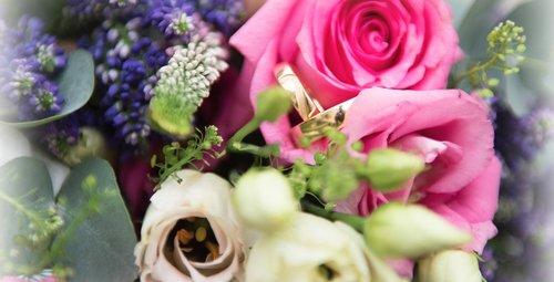 Photographe mariage -  PHOTO'VIT Kathy,  Photographe - photo 5