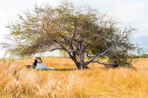 Photographe mariage - CARINA PAYET - photo 140