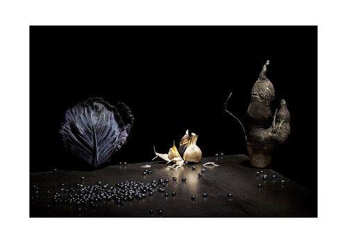 Photographe - mélanie bahuon - photo 10