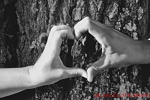 Photographe mariage - lancelot norman - photo 7